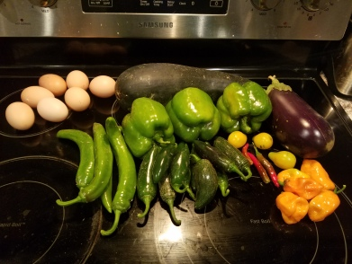 Variety of Peppers from our garden.